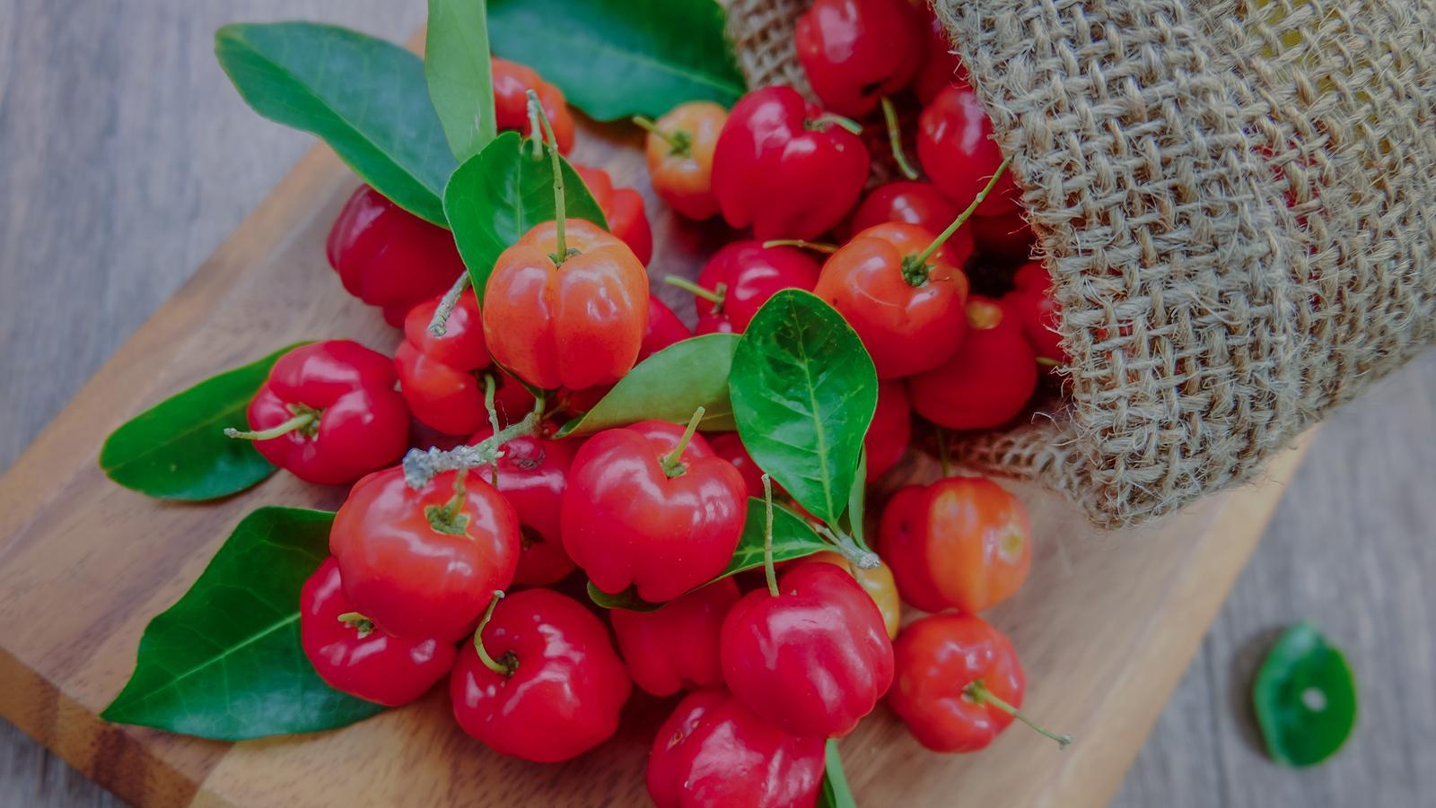 Acerola: l'immunorafforzante naturale