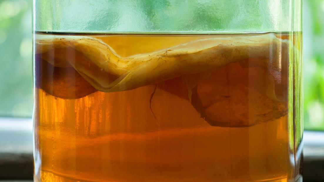 Ingredientele principale ale ciupercii Kombucha