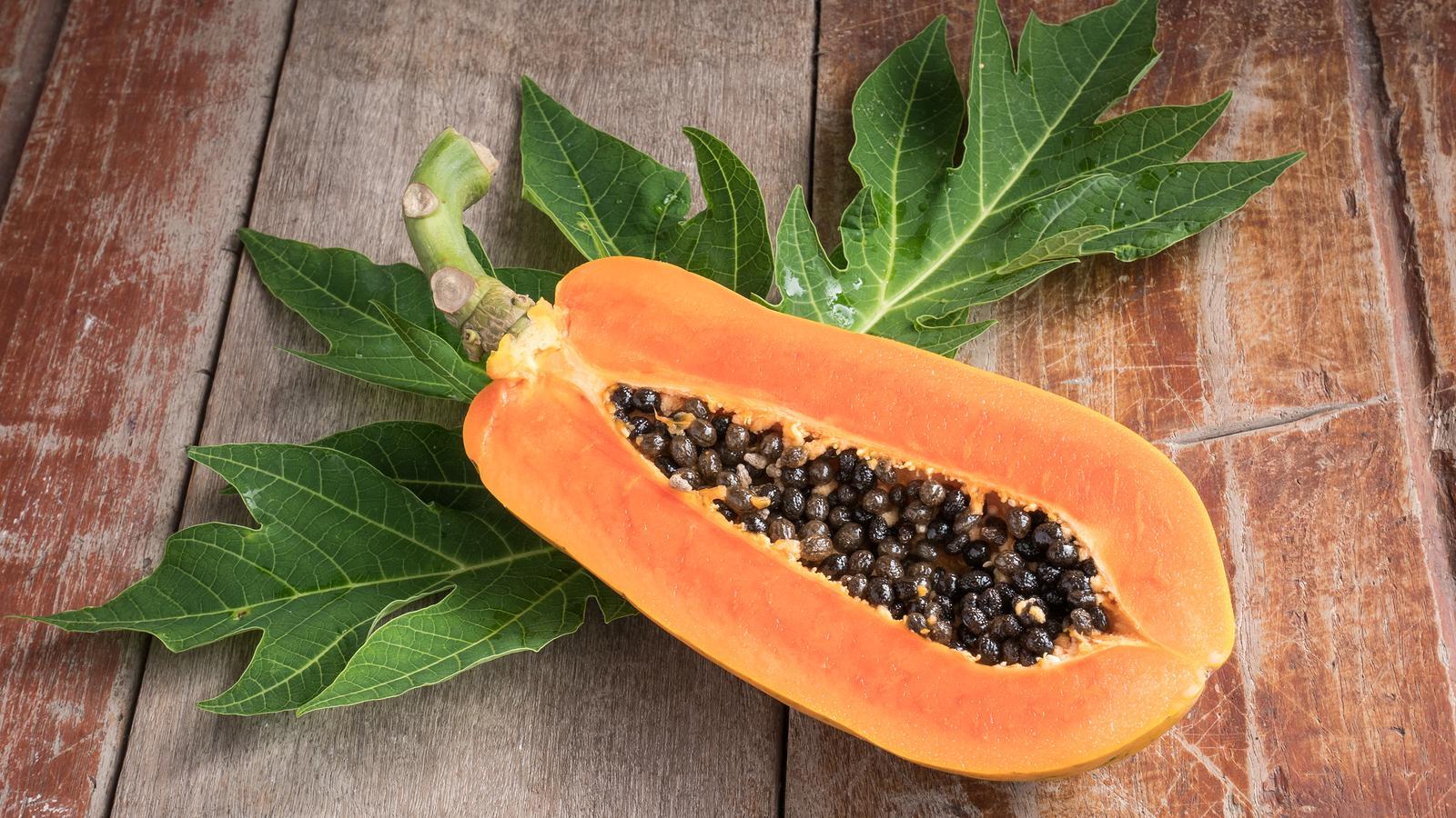 Papaia: La pianta medica che migliora la digestione