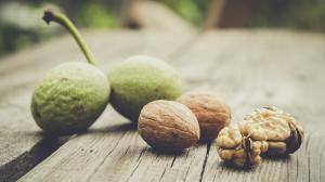 Zöld dió: az ínyenc gyógynövény