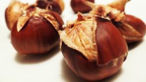 Lecznicze właściwości kasztanów: dlaczego warto spożywać kasztany?