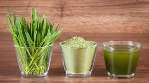 Zielony jęczmień doskonale wspiera układ odpornościowy, oczyszcza organizm, zwalcza problemy trawienne, chroni przed rozwojem grzyba Candida.