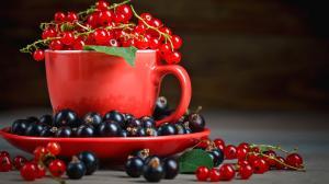 Porzeczki – Oczyszczają krew, wzmacniają kości i detoksykują