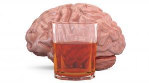 Cosa ci fa l'alcool?
