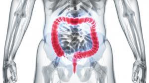 Nettoyage intestinal régulier pour notre santé