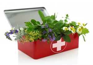 A gyógynövények felhasználása