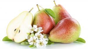 Heilwirkungen der Birne