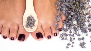 Plesňové infekcie - Zbavte sa ich pomocou levanduľového oleja