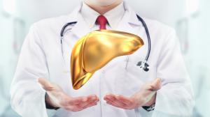 La protezione del nostro fegato è indispensabile