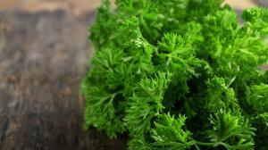 Detoxifiere cu plante medicinale