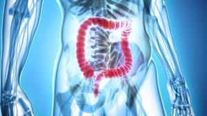Pulizia del colon: contro le malattie, parassiti ed acne