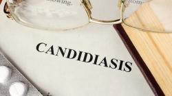 Candida albicans: barát vagy ellenség?