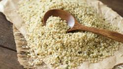 Konopné semeno - chráni zdravie