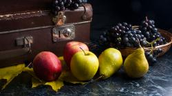 Rafforzamento immunitario – Prepariamoci in tempo all'autunno